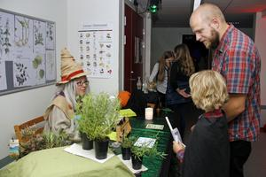 Både magiska örter och tålamodsdroppar fanns att botanisera bland.