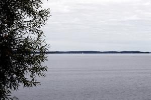 Från att ha för hög vattennivå i våras har situationen för Mälaren blivit den omvända efter sommartorkan. Nu är nivån 2 decimeter lägre än normalt.  Foto: Mats Andersson, arkivbild