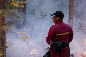 Från skogsbranden i Brattsjö, Örnsköldsvik.