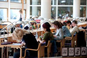 Högre utbildning och arbetsmarknad borde passas ihop bättre.ARKIVFOTO: Bertil Ericson / TT