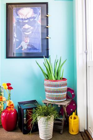 Starka färger, kitsch och gröna växter är Eva och Martins melodi.