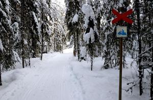 Lederna genom naturreservatet kommer att ses över innan nästa vinter.