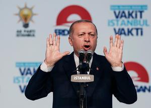 Turkiets president Erdogan försöker stärka sin ställning. Foto: Emrah Gurel/AP Photo/TT