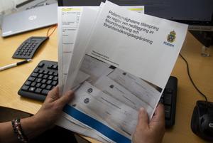 Rapporten skrevs på uppdrag av förre rikspolischefen Dan Eliasson och fokuserar på huruvida fler brottsutredningar hade kunnat läggas ner med stöd av bestämmelserna om förundersökningsbegränsning.
