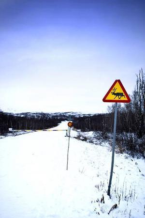 Vägen upp mot Stekenjokk är stängd sedan några veckor. Men om gruvplanerna blir verklighet kommer vägen förmodligen att hållas öppen året om enligt Vilhelmina minerals Peter Hjorth.