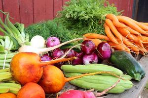Sveriges mål är att andelen ekologiska livsmedel ska vara 60 procent i offentlig sektor år 2030. Förra året var den siffran 38 procent.  Foto: TT