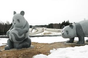 2006 Stora Pandor vid Dragon Gate.