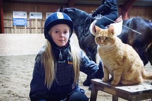 Nioåriga Elin Hammarström har ridit sedan hon var fem år. Här tar hon en paus med huskatten Pussel.