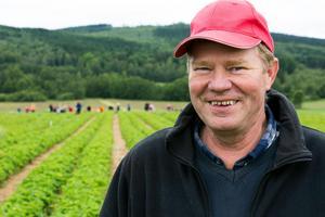 Foto: Klockar Mattias Nääs/ArkivAlf Jansson berättar att vi kan vänta oss jordgubbar till midsommar.