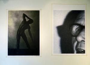 Konstnären Fredric Ceson hånar nationalsocialismens uttryck i utställningen