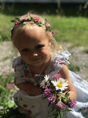 Thea Norlin plockar blommor till midsommarstången. Foto: Jeanette Nilsson