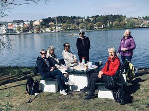 Säsongsavslutning för stavgång med SKPF Avd50:s promenadgäng