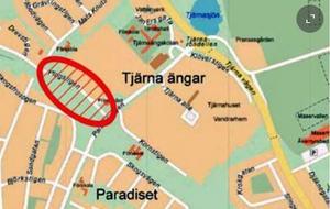 Här ska nya skolan byggas med start nästa år. Fastighetsbolaget Hemsö kommer att äga lokalerna. Bild: Borlänge kommun.