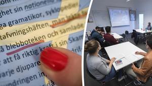 Per-Åke Lindblom anser att Sverige bör ta efter den norska språkkravsmodellen som innebär att den som inte kan dokumentera goda norskkunskaper har rätt och plikt till 650 timmars norskundervisning utan krav på godkändnivå. Bilder:  Fredrik Sandberg/TT / Jessica Gow/TT
