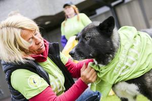 Merja Carnebro från Svegs Ryttarförening höll i föreningens skräpplockande och såg också till att stallhunden Nitro fick vara med på ett hörn.