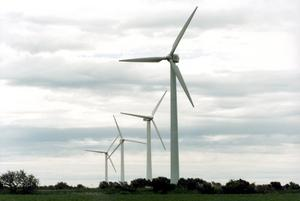 Målsättningen är ett investeringsbeslut nästa år och sedan tar det ungefär 2,5 år att bygga vindkraftsparkerna. Foto Björn Larsson Ask / SvD / SCANPIX