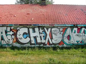 En av de graffitimiljöer som försvunnit är grishuset på Frösön som har ersatts med villor. Motiven varierade med årstiderna på den upplåtna väggen.