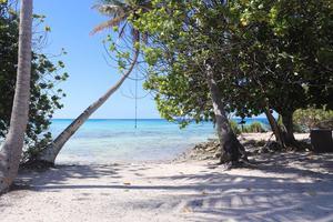 Turkost hav och vita sandstränder har Aloha Sailings besättning kunnat njuta av på öarna, som här på Marquesas, i Stilla havet.  Foto: Privat