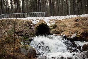 Det rinner mer vatten än vanligt i bäckar och andra vattendrag i bland annat Falun för att vara i mitten av december. Mer än på omkring 20 år.