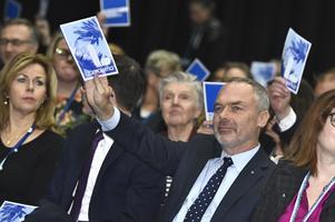 Partiledningens linje vann: Ja till överenskommelse mellan L, C, S och MP.