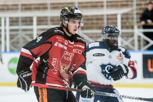 Axel Levander gör sin första säsong i HHC-tröjan.