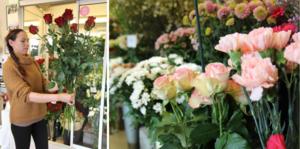 Rosor är en populär Alla hjärtans dag-gåva.
