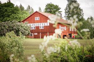 Under slutet av förra året tog kommunfullmäktige i Bollnäs beslut om att låta Erik och Marta Perssons minnesstiftelse sälja Träslottet i Arbrå.