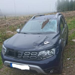 Personbilen blev tilltygad vid kollisionen med älgen. Föraren  chockades men ska i övrigt inte ha skadats.