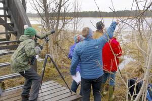 Vid Ändsjön syntes eller hördes 26 fågelarter. Foto: Ingvar Alkemar
