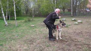 Anders Boman brukar ta med schäfern King till hundrastplatsen intill Bomhus centrum. Här kan King leka och springa av sig.