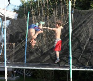 Leo och Lino hoppar på studsmattan
