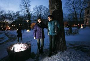 Ord på jamska är mustiga och innehåller fler nyanser än svenskan, tycker Lena Hedman och Irja Åsling. Nu har de samlat en del av den jamska ordskatten i abc-boken