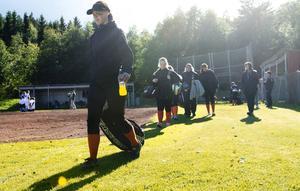 Sundsvall Mosquitoes går in i serien i morgon efter ett års uppehåll.