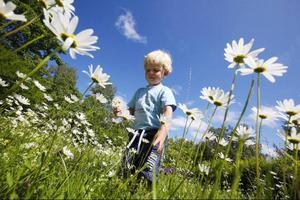 Oskar Bergman, 3 år, kan konsten att leka i naturen. Det mesta har han lärt sig av kompisen Gösta Olsson, 70+. Nu finns deras bästa lekar samlade i en nyutkommen bok.