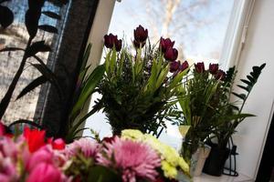 Efter VM har Helena och David fått många blommor.