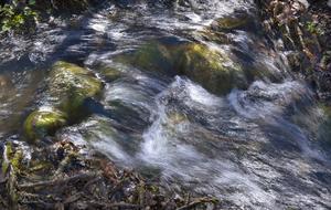 Rinnande vatten. LRF kritiserar att jordbruket föreslås stå för miljardkostnader för vattenrening. Foto: Claudio Bresciani/TT