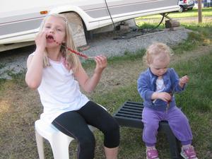 Här sitter mina barnbarn Wilma och Ida och njuter av smultron plockade utanför campingen Silvköparen i Sala.