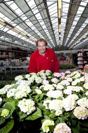 Vardagsprakt. Rolf Sandahl jobbar till vardags som trädgårdsmästare på Plantagen. Ibland åker han ut i landet och är med och startar nya butiker, något han tror kan ha spelat en roll i hur han fick jobbet i tv-programmets trädgårdsmästargäng.Foto: Per G Norén