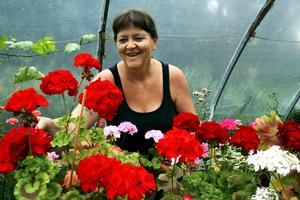 Pelargonfantast. Annelis Löfströms växthus ligger lite avsides och får inte så många besökare under gårdsbutik- och loppisrundan, men hon tycker ändå att det är roligt att vara med.