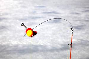 Magnetvippa kallas den för att bollen sitter med en magnet mot den röda runda skivan. Mellan dessa sitter en justerbar platta som anpassas efter agnets, i detta fall mörtens tyngd. När gäddan hugger lossnar den plattan som i sin tur sitter i ett en dm lång snöre och vippan flyger upp.