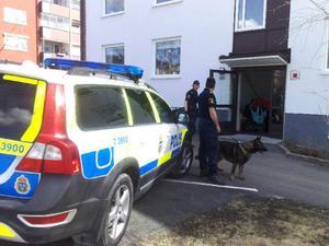Falsklarm bakom massiv polisinsats i centrala Östersund.
