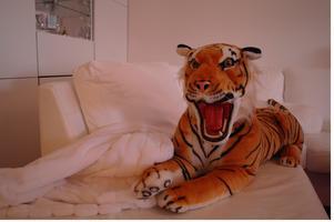 Min Vän Tiger!