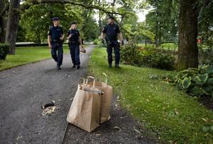 Här i Slottsparken blev en 24-årig kvinna sexuellt ofredad av en man under natten mot söndagen.