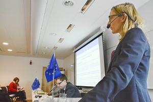 Carole Mancel-Blanchard från EU-kommissionens kontor i Bryssel informerar EU-handläggare från fem olika länder om hur EU:s tillsyn av de utbetalda stödpengarna kommer gå till.