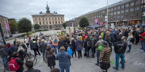 Från klimatdemonstrationen i Gävle i fredags.