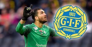 Målvakten Alireza Haghighi, här i Eskilstuna i fjol, har skrivit på för GIF Sundsvall.