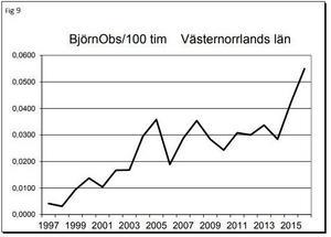 Så hör har ökningen av jägarnas observation av björn i länet sett ut de senaste 20 åren. Illustration: Länsstyrelsen