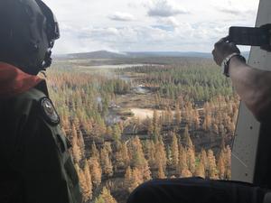 Personal från brandkåren samt Försvarsmakten kontrollerar effekterna efter bombfällning. Försvarsmakten, tillsammans med andra myndigheter, provar effekterna av en flygbomb mot skogsbrand på Älvdalens skjutfält. Bomben av typ GBU-49 släpptes på  GPS-koordinater från en JAS 39 Gripen. Foto: Mats Nyström/Försvarsmakten