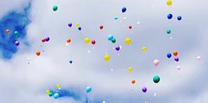 Det blev en himmelsk regnbågsdans för alla människors lika värde när barnen vid Domnarvets skola firade Fritidshemmens dag.