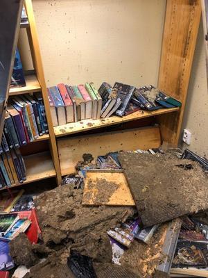 800 barnböcker skadades i måndagens översvämning på Nynäshamns bibliotek.